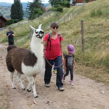 Wanderungen mit Tieren