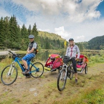 Fahrrad / Mountain-Bike