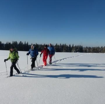 Snowshoeing Hikes