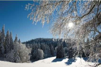 domaine-nordique-2014-2015-la-bresse-lispach-paysage-380