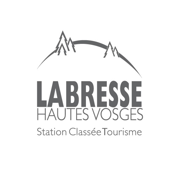 logo-la-bresse-gris-507