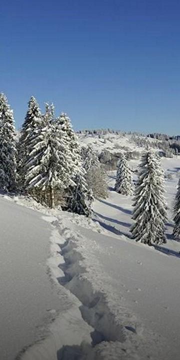 Destination La Bresse