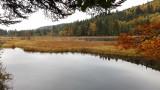 Le lac de Lispach à l'automne à La Bresse Hautes-Vosges