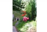 Maison LS005 La Bresse