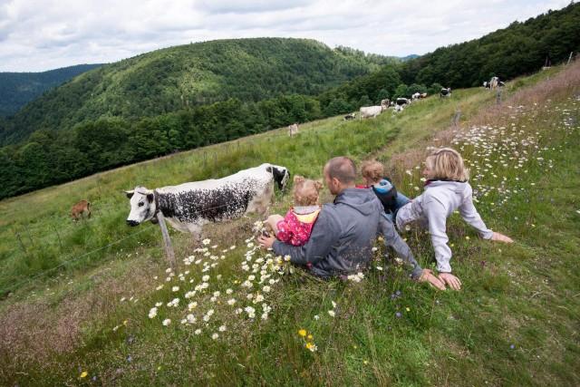 Balades familiales à petit prix Decouverte d'une ferme de Montagne La Bresse Hautes-Vosges