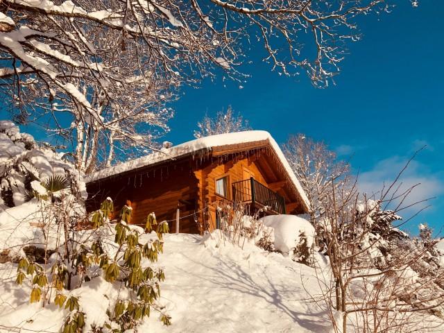 vue-neige-1-500349