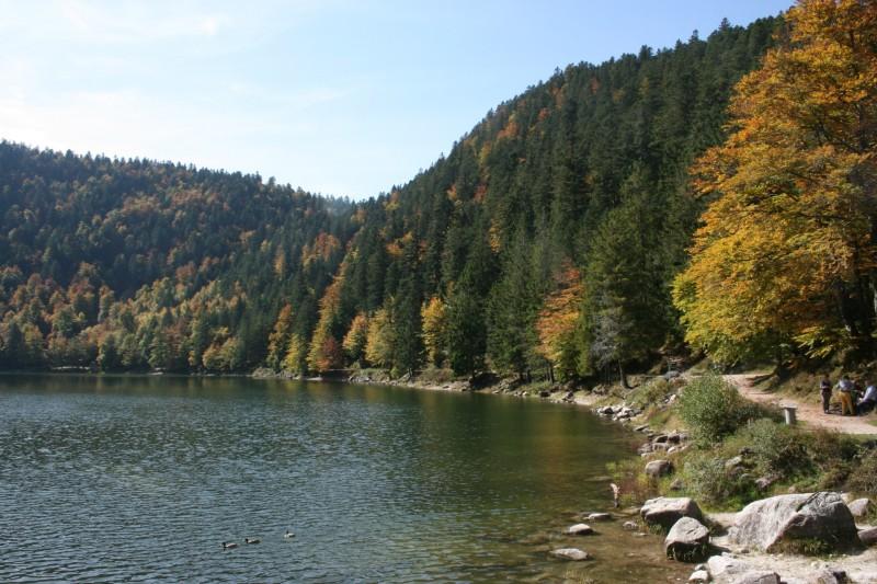 Le lac des Corbeaux à l'automne à La Bresse Hautes-Vosges